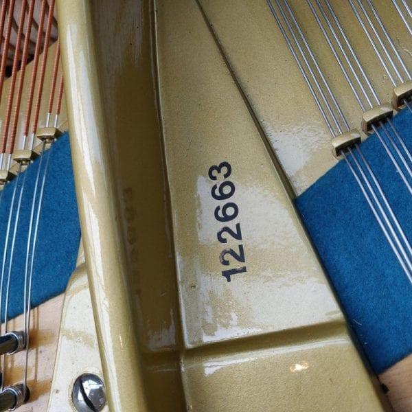 Bechstein C 5   Schumer Piano's & Vleugels